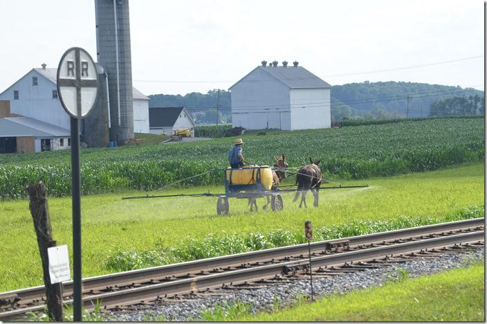 Amish farmer near Strasburg.